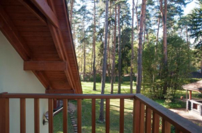 Vacation home in Sosnovy bor, Pushkino